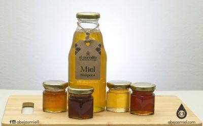 Opciones para almacenar miel de melipona