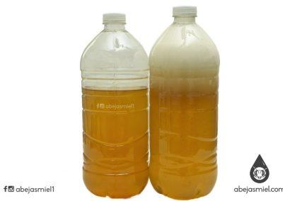 Miel fermentada de melipona