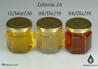 Diversidad de mieles en la colonia