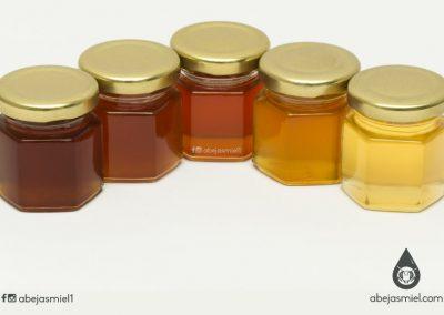 Diversidad de mieles de meliponinos