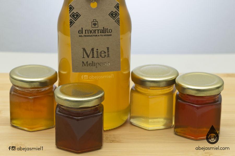 venta miel de melipona